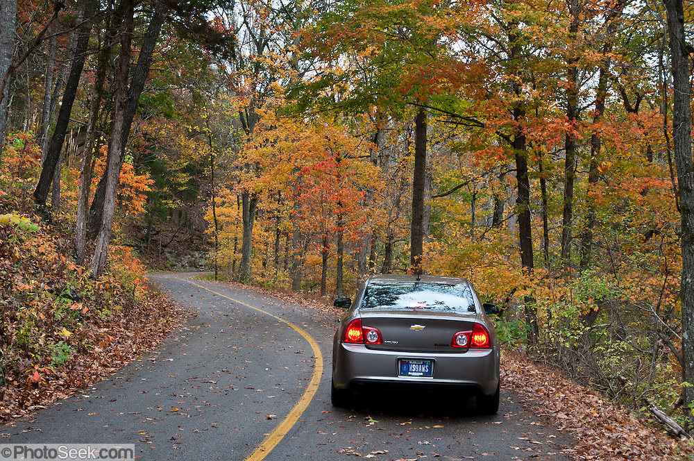 A car drives Flint Ridge Road through a tunnel of orange, yellow, and green fall leaves in Mammoth Cave National Park, Kentucky, USA.