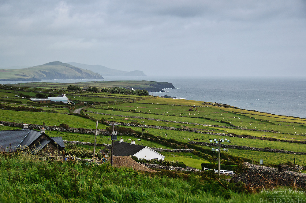 View from the Famine Cottage, a museum on the Dingle peninsula that was once inhabited by an Irish family that emigrated during the Irish Potato Famine.