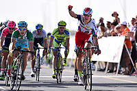 Arrival , KRISTOFF Alexander (NOR) Katusha, winner, GUARDINI Andrea (ITA) Green Sprint Jersey, during the Tour of Oman 2015, stage 3, Al Mussanah Sports City - Al Mussanah Sports City (158,5Km) on February 19, 2015. Photo Tim de Waele / DPPI