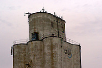 Rounded head house of an old grain elevator in Nebraska.