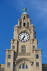 LIVERPOOL, ENGLAND - Monday, May 9, 2016: The clock face a Liver bird of the Royal Liver Building on Liverpool's historic World Heritage waterfront. (Pic by David Rawcliffe/Propaganda)