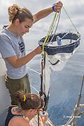 Viridiana Jimenez-Moratalla Pelhate, principal investigator for CSR research cruise of Tethys Research Institute holds a plankton sampling net while researcher Giulia Bergamaschi collects the sample, Pelagos Sanctuary, Ligurian Sea, Italy ( Mediterranean Sea )
