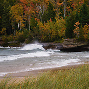 """Autumn Spray""<br />