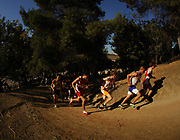Oct 20, 2006; Walnut, CA, USA; Runners ascend the Switchbacks Hills at the 59th Mt. San Antonio College Cross Country Invitational.