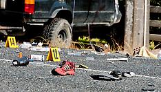 Kaukapakapa-Fatal accident after vehicle hits poli