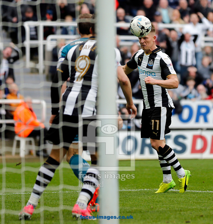 Matt Ritchie (r) of Newcastle United scoring with a header to make it 2-1 during the Sky Bet Championship match at St. James's Park, Newcastle<br /> Picture by Simon Moore/Focus Images Ltd 07807 671782<br /> 01/04/2017