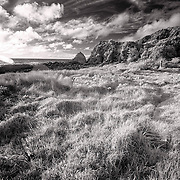 Visit my Web site for full-sized images at www.stewartbaird.com<br /> <br /> <br /> Follow me on Twitter<br /> <br /> <br /> Google+