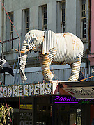 The Elephant at Zookeeper's Cafe, along Tay Street, Invercargill, New Zealand
