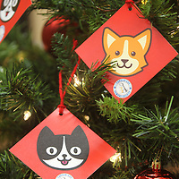 A Santa Paws Christmas Tree is set up inside the Mayor's office in Tupelo with many other locations in town and decorated with tags that have the needs of pets and the humane society posted on the back.
