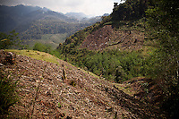 Deforestation in the Quiche mountains, Guatemala.