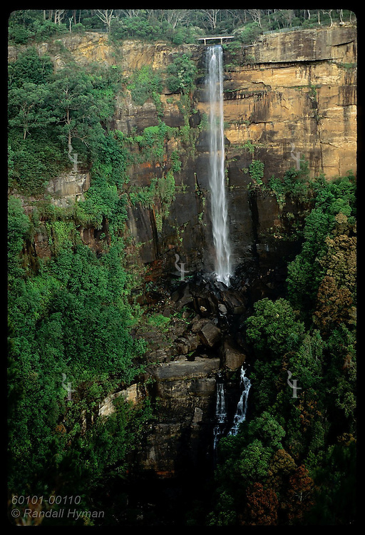 Fitzroy Falls plummets 81m over escarpment in Southern Highlands of the Great Dividing Range; NSW Australia