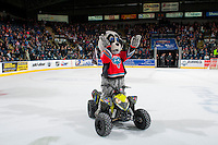 KELOWNA, CANADA - FEBRUARY 13: Rocky Racoon, the mascot of the Kelowna Rockets rides his Polaris quad on the ice against the Seattle Thunderbirds on February 13, 2017 at Prospera Place in Kelowna, British Columbia, Canada.  (Photo by Marissa Baecker/Shoot the Breeze)  *** Local Caption ***