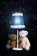 two teddy bears are sitting under an old vintage lamp