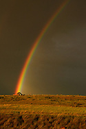 Rainbow and tent in the Great Plains of Montana at Buffalo Camp in American Prairie Reserve. South of Malta in Phillips County, Montana.