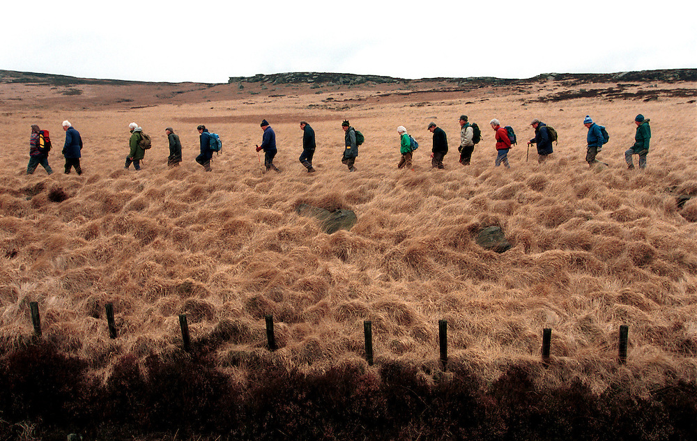 Ramblers walk on private land to demonstrate against the anti-Right to Roam laws that were in place. Yorkshire, UK.