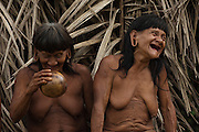Huaorani women Bebanca Wane and Meñemo Bopoga.<br /> Bameno Community. Yasuni National Park.<br /> Amazon rainforest, ECUADOR.  South America<br /> This Indian tribe were basically uncontacted until 1956 when missionaries from the Summer Institute of Linguistics made contact with them. However there are still some groups from the tribe that remain uncontacted.  They are known as the Tagaeri & Taromenane. Traditionally these Indians were very hostile and killed many people who tried to enter into their territory. Their territory is in the Yasuni National Park which is now also being exploited for oil.