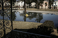 Katrina Hurricane aftermath in flooded New Orleans. A decaying body still lies undignified in fetid water on residential Elysian Fields avenue as flood level recedes. Three days earlier a Coast Guard crew patrolling on a boat discovered the body and, instead of plucking him out to the nearby highway ramp, tied him to an electric pole and went off.  New Orleans, Louisiana. 12 September 2005.