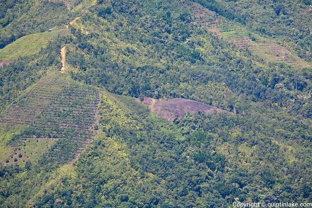 Slash and burn agriculture visible from Nabalu, Sabah, Malaysia
