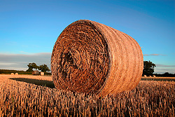 UK ENGLAND NORFOLK HINDOLVESTON 7AUG06 - Straw bales on a harvested field in north Norfolk...jre/Photo by Jiri Rezac..© Jiri Rezac 2006..Contact: +44 (0) 7050 110 417.Mobile:  +44 (0) 7801 337 683.Office:  +44 (0) 20 8968 9635..Email:   jiri@jirirezac.com.Web:    www.jirirezac.com..© All images Jiri Rezac 2006 - All rights reserved.