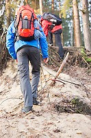 Male backpackers hiking in forest