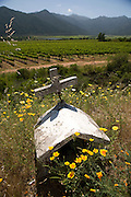Shrine in the Maipo Valley, Chile