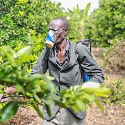 World Renew - Uganda