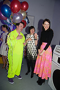 JOE SCOTLAND; ALICE RAWTHORN; ROKSANDA ILINCIC, Pop party. the birthday celebration of twin sisters Valeria Napoleone and Stefania Pramma. Studio Voltaire, London SW4. 17 May 2013.