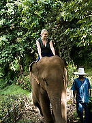 Guests riding elephants at Anantara Golden Triangle resort.