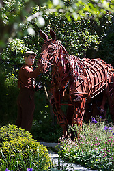 "© Licensed to London News Pictures. 19/05/2014. London, England. Pictured: Joey, the 3 man horse puppet from the theatre production ""War Horse"" at a photocall in the ""No Man's Land"" show garden. Press Day at the RHS Chelsea Flower Show. On Tuesday, 20 May 2014 the flower show will open its doors to the public.  Photo credit: Bettina Strenske/LNP"