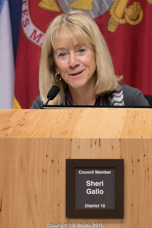 Austin District 10 Council Member Sheri Gallo at City Council Meeting