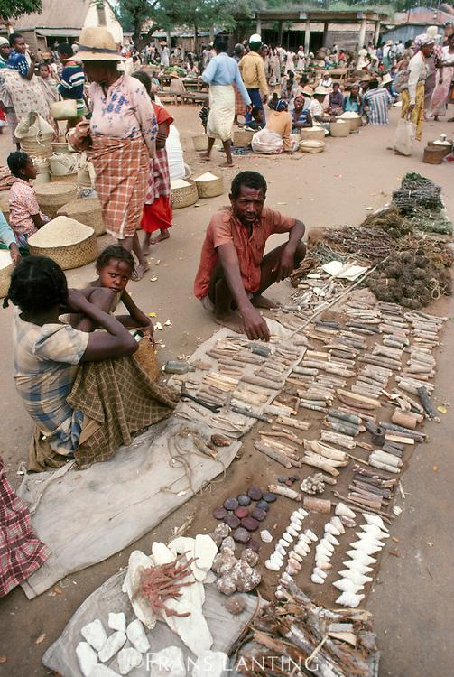 Medicinal plants offered for sale at market, Madagascar