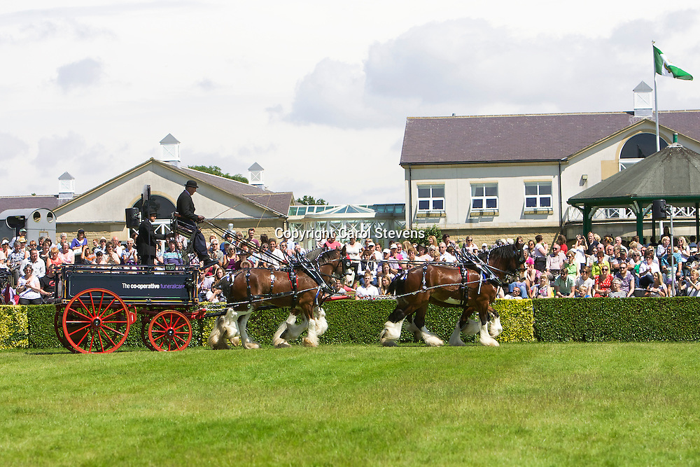 Gawin Holmes' Shire (John B &amp; Walton Royal Sovereign) and Clydesdale (Jake &amp; Sorbie) Team<br />