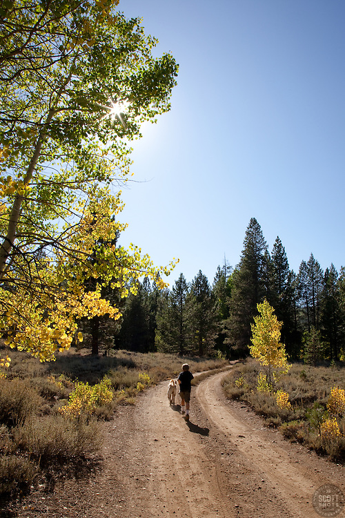 Boy and dog walking down a path in Autumn.