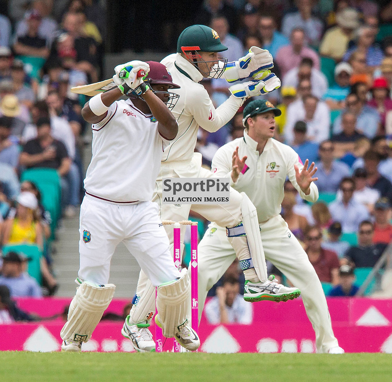 3rd Test Match 2015-16 Day 1, Australia v West Indies, Sydney Cricket Ground; 3 January 2016<br /> West Indian Darren Bravo plays a cut shot for four from the bowling of Australian Nathan Lyon