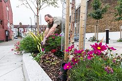 Community gardening, The Gardens, London Borough of Haringey, London UK 2014