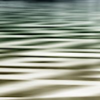The abstract photograph of a texture and surface.