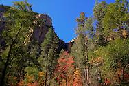 Colorful scenery along the trail - Oak Creek Canyon, AZ