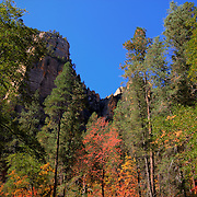 Colorful scenery along the trail - Oak Creek Canyon, AZ