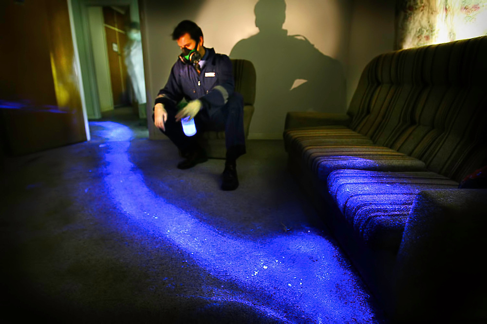 Steven Fowler of police forensics shows how Luminol Blood Detection Reagent Spray shows up bloody drag marks which may be undetectable in daylight. This image of a scene which might be of a location where a person was murdered and dragged away was actually created using pig's blood  Pic By Craig Sillitoe This photograph can be used for non commercial uses with attribution. Credit: Craig Sillitoe Photography / http://www.csillitoe.com<br />