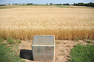 The Magruder Plots:<br /> Environmental Production History 1892-2004<br /> <br /> In 1892, A.C. Magruder initiated a soil fertility experiment which would be continued for more than 100 years. The Magruder plots were initially established to evaluate wheat production on native prairie soils without fertilization. Although several changes have been made to the initial trial, the Magruder plots remain the oldest continuous soil fertility wheat experiment west of the Mississippi River. One of the key findings of the Magruder Plots has been the sustained wheat production of more than 16 bu/ac, following more than 100 years without any fertilization.  Not until the last 5-10 years have we seen any benefit of K fertilization.  Early on, the response to P fertilization was notable (P-only versus the check).  As issues of sustainability and environmental safety become increasingly more important, trials such as the Magruder Plots will be further explored.