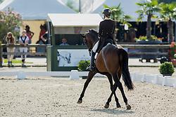De Deken Julie (BEL) - Lucky Dance<br /> Belgisch Kampioenschap dressuur <br /> Hulsterlo - Meerdonk  2014<br /> © Dirk Caremans