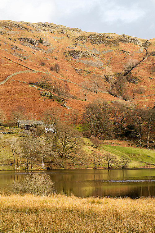 Loughrigg Tarn In The English Lake District