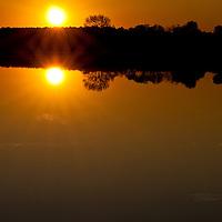 Reflection of sunrise in the Little Blackwater River, Blackwater National Wildlife Refuge, Cambridge, MD
