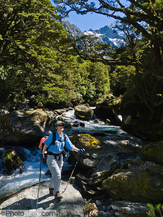 A steep, rooty, scenic hike ascends Crucible Stream Valley through forest wilderness to alpine Crucible Lake in the Southern Alps, South Island, New Zealand. In 1990, UNESCO honored Te Wahipounamu - South West New Zealand as a World Heritage Area. For licensing options, please inquire.