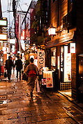 Hozenji Yokocho lane where Wasabi and Kagawa restaurants are located.