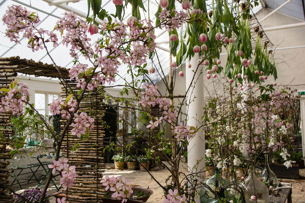 Spring at Sofiero