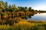 Mosonmagyarovar lake 2