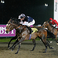 Amber Heights and Jimmy Fortune winning the 8.30 race