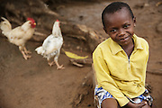 A young girl sits at home while chickens walk by in Katiola, Cote d'Ivoire on Friday July 12, 2013.