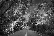 Road in the Haynesville Shale region in Northern Louisiana.